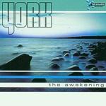 Cover: York - The awakening